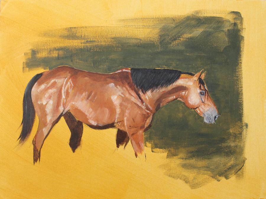 Study-of-a-bay-horse-(Dekor